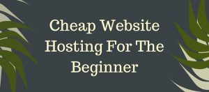 Cheap Website Hosting For The Beginner